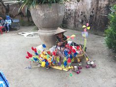 YOGYAKARTA, JAVA, INDONESIA - the nicest lady