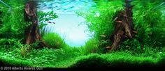 2010 AGA Aquascaping Contest - Entry #130
