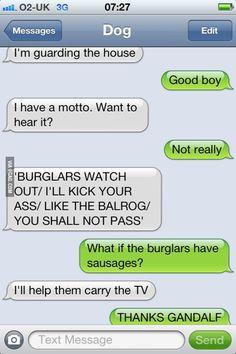 Lotr dog funny dog texts, hilarious texts, funny gifs, humor texts, funny j Funny Dog Texts, Dog Quotes Funny, Funny Jokes, Hilarious Texts, Humor Texts, Funny Gifs, Funny Troll, Freaking Hilarious, 9gag Funny