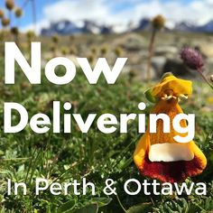 Delivering premium soils and mulches in #Ottawa and #Perth. #getoutside #springhassprung #mulch #gardensoil #growwithus