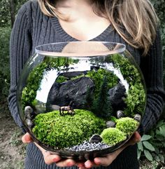 "Bio-Bowl Terrarium with Organic Woodland Plants AlternativeLarge bowl terrarium with invisible lid and horses in the pasture scene.wordsnquotes: "" culturenlifestyle: "" Original Terrarium Designs by Patricia Buzo Terrarium enthusiast Patricia Buzo"