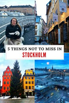 wwwflirtingwiththeglobecom stockholm things click miss read post from not the pin in to 5 5 Things in Stockholm Not to Miss Click the pin to read the post from You can find Stockholm sweden and more on our website Stockholm Travel, Visit Stockholm, Stockholm Sweden, Scandinavian Cruises, Scandinavian Countries, Cool Places To Visit, Places To Travel, Places To Go, Dubrovnik