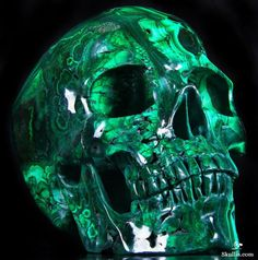 the Finest Gemstone & Crystal Skulls, Skull Jewelry (Skull Ring, Buckle, Earring & More) Crystals And Gemstones, Stones And Crystals, Natural Gemstones, Crane, Skull Artwork, Skull Jewelry, Rocks And Gems, Crystal Skull, Skull And Bones