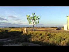 L'arbre à vent en Charente Maritime
