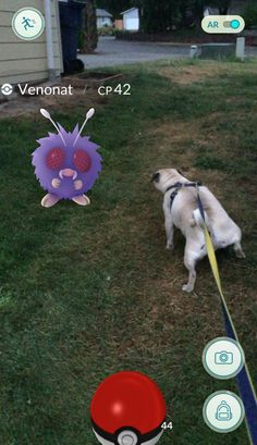 Took my dog out while playing Pokemon:GO... http://ift.tt/29pmrbr
