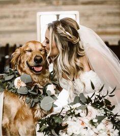 bride and her puppy wedding photo ideas #dogs #weddingdogs #weddingphotos #weddingphotography #weddingideas #weddinginspiration