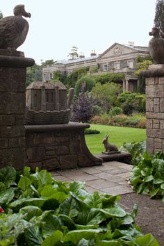 Strangford Lough, along Ireland's sparkling northern coast, and experience the hidden wonders of the legendary Mount Stewart gardens