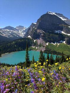Grinnell Lake during wildflower season