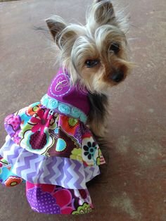 Fancy Monogrammed dog dress pet clothing With by Rufflesforcharli