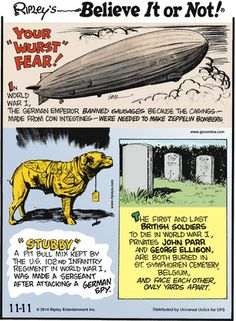 Today on Ripley's Believe It or Not - Comics by John Graziano Ripley Believe It Or Not, British Soldier, Comic Games, Calvin And Hobbes, True Crime, World War I, Zeppelin, Macabre, Comic Strips