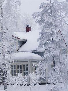 Winter splender