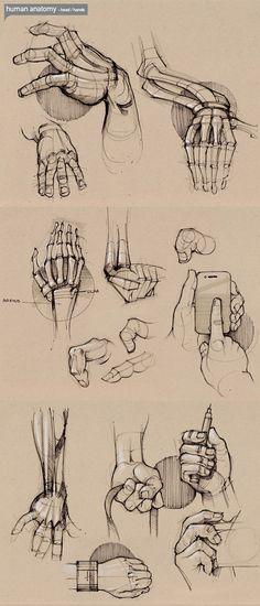 Aprenda a Desenhar #1                                                                                                                                                                                 Mais