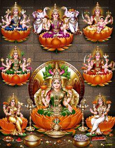 Album No. - 244 Asta Lakshmi- Album No. – 244 Asta Lakshmi Contact us for devotional Pictures at Email : lavanyapictures Ph : 9440207777 - Saraswati Goddess, Indian Goddess, Shiva Shakti, Goddess Lakshmi, Shiva Linga, Goddess Art, Lakshmi Photos, Lakshmi Images, Shri Hanuman