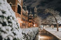 A few of our favorites from last night's flurries! Campus has never been so busy at 1 a. 1 Am, Baylor University, Cute Girl Wallpaper, Snow, Colleges, Business, Bears, Outdoor, Beautiful