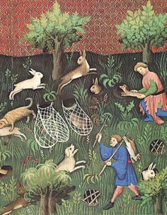 Rabbit hunting with a ferret. http://www.pinterest.com/anothermouse/medieval-drawing-everyday-living/
