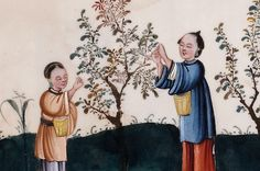 Album of Chinese paintings showing stages of tea production (detail), watercolour on pith paper, 19th century. Caroline Simpson Collection, Historic Houses Trust
