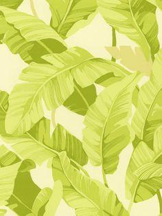 Fronds Palm Leaf Wallpaper | AmericanBlinds.com