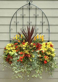 Window Box Planter and Patio Wall Trellis combination creates a dramatic display on an otherwise boring blank wall.