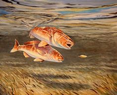 BrendanCoudal.com a new Redfish painting