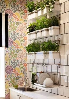 Ideas for a Stylish Indoor Kitchen Herb Garden Apartment Therapy Growing herbs indoors isnt just a dream its a reality you can get to work on today Using systems such a. Herb Garden In Kitchen, Diy Herb Garden, Kitchen Herbs, Garden Ideas, Kitchen Ideas, Herbs Garden, Wall Herb Garden Indoor, Diy Kitchen, Kitchen Design