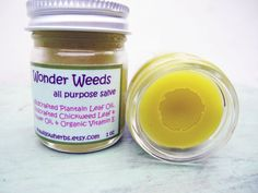 All Purpose Salve  Wonder Weeds  Wildcrafted by seawillowherbs, $10.00