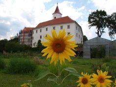 Immer einen Ausflug wert: das Schloss Kirchberg in Grafendorf. #derwiesenhof #wohlfühlhotelwiesenhof #ausflug Mansions, House Styles, Home Decor, Hiking, Nature, Mansion Houses, Homemade Home Decor, Villas, Fancy Houses