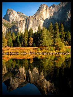 sunlit reflection, Yosemite