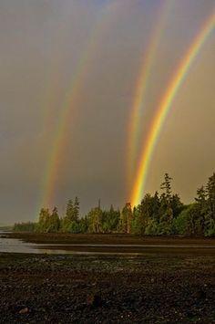 A colorful rainbow...
