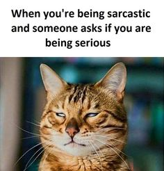 Being Sarcastic