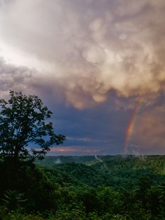 Clearing Storm - Walton, West Virginia