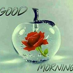 Shree Krishna Sharnam Good Morning Gujarati - https://funnytube.in/shree-krishna-sharnam-good-morning-gujarati/