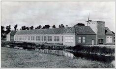 CSG Oostergo 1953
