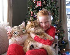 Custom Pet Portrait  Plush Pillow, Personalized gift for pet lovers, dog portrait pillow