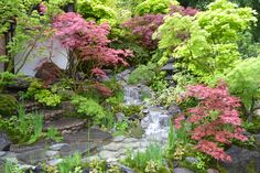 Waterfall Garden #ChelseaFlowerShow2015