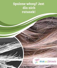 Spalone włosy? Jest #dla nich ratunek!  Nie zawsze warto wydawać #pieniądze na komercyjne produkty, które nie #muszą być bardziej skuteczne od naturalnych sposobów #regenerujących włosy.