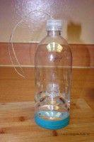Water Bottle Wasp Trap