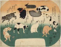 Springfield MA museums Cats in Various Attitudes by Utagawa Kuniyoshi Japanese Bobtail, Japanese Cat, Asian Cat, Bobtail Cat, Japanese Folklore, Kuniyoshi, European Paintings, Japanese Prints, Japan Art