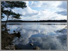 Mirror of the clouds, Horn Pond, Woburn, MA