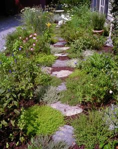 stepping stones in the herb garden?  mayhap....