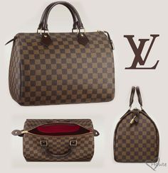 Google Image Result for http://hautecanada.files.wordpress.com/2012/06/louis-vuitton-speedy-30-with-damier-canvas-haute-011.jpg