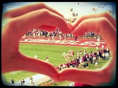 I saw someone else have this but a baseball field so I done this for the seminole fans!!!
