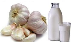 Garlic in milk contains lots of health benefits. Garlic milk is a therapeutic drink that helps treat numerous diseases. Home Remedies For Bronchitis, Dry Cough Remedies, Health Remedies, Natural Remedies, Flu B, Garlic Health Benefits, Top Essential Oils, Human Dna, Diet