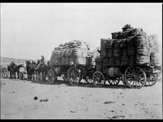 Attached with a Trailer Hitch. Is this a Wagon Train?