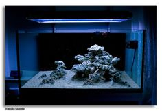 Tips and Tricks on Creating Amazing Aquascapes (for #Reef #Aquariums)