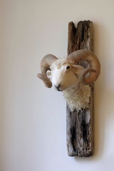 Small cotton and faux fur ram on driftwood. Faux taxidermy sheep wall sculpture.
