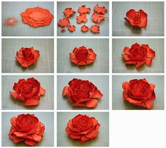 More 3d paper flowers flowers paper pinterest 3d paper bits of paper a week full of flowersmore pins like this at fosterginger pinterest mightylinksfo