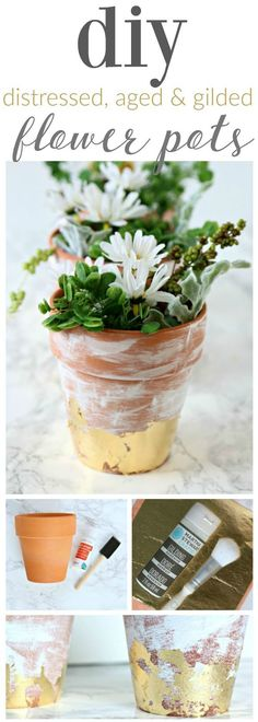 DIY Distressed Gold Leaf Terracotta Pots - Learn how to age, distress and gold leaf any terracotta pot the easy way. Step by step tutorial. Click the photo to see how. TodaysCreativeLife.com