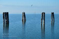 on the lake by crescenzov2 #nature #mothernature #travel #traveling #vacation #visiting #trip #holiday #tourism #tourist #photooftheday #amazing #picoftheday
