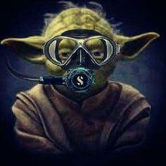 Dive I must.....