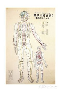 Focal Points of the Human Body, Front View, Watercolor Giclee Print at AllPosters.com